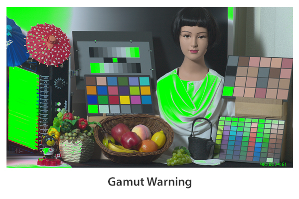 Gamut Warning
