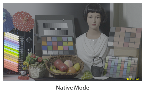 Native Mode